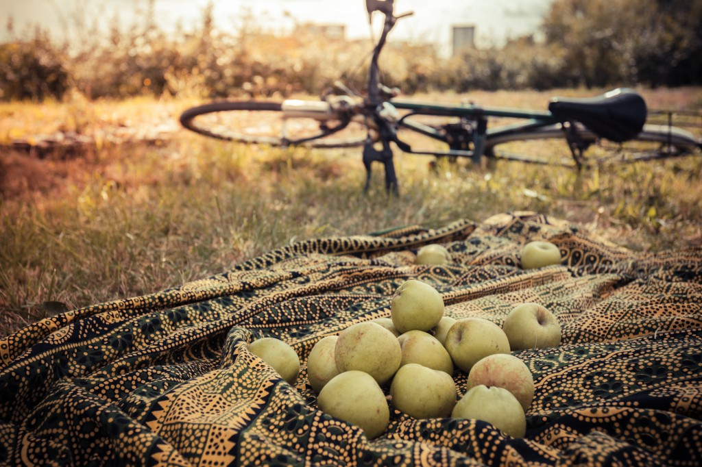 Apples on blanket outside with bike in background